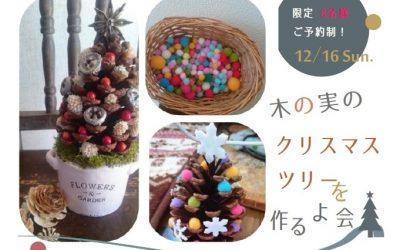 12/16 Sun. 木の実のクリスマスツリーを作るよ会